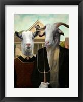 Framed American Goat