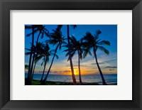 Framed Sunset And Silhouetted Palm Trees, Kihei, Maui, Hawaii