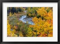 Framed Autumn Color Along Divide Creek In Glacier National Park, Montana