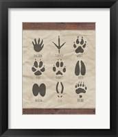 Framed Paw Prints