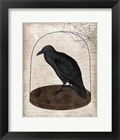 Framed Raven Jar