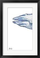 Framed Whale I