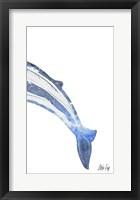 Framed Whale III