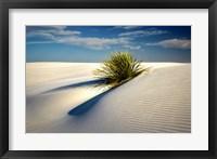 Framed Dune