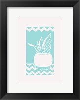 Framed Mint Snake Plant