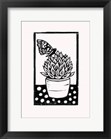 Framed Black Succulent