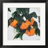 Framed Oranges II
