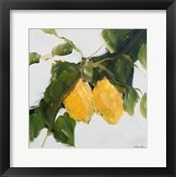 Framed Lemons II