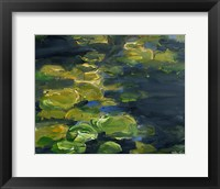 Framed Lilypad Pond