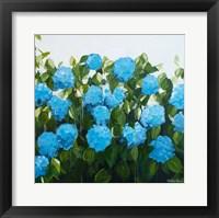 Framed Blue Hydrangeas I