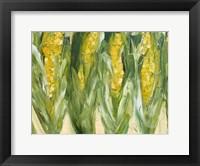 Framed Corn