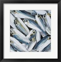 Framed Fish II