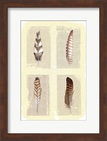 Framed Traditional Figurative Feathers