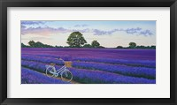 Framed Evening Lavender