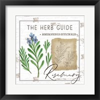 Framed Herb Guide - Rosemary