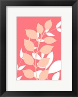 Framed Coral Foliage I