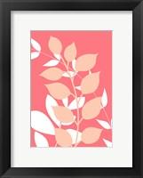 Framed Coral Foliage III