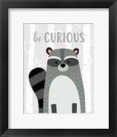 Framed Be Curious Raccoon