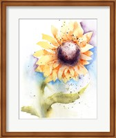 Framed Sunflower II