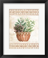 Framed Southwest Terracotta Succulents I