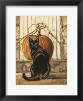 Framed Black Cat