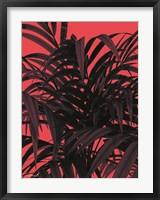 Framed Tropical Leaf