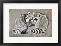 Framed Two Raccoons
