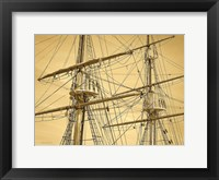 Framed Crows Nest