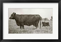 Framed Cow and Baby