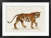 Framed Walking Tiger Light