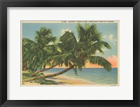 Framed Florida Postcard III