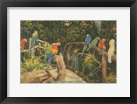 Framed Florida Postcard II