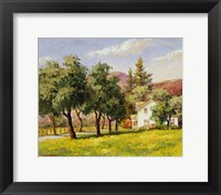 Framed California Spring