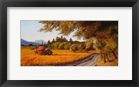 Framed Dry Creek Autumn