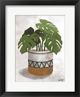 Framed Monstera Plant