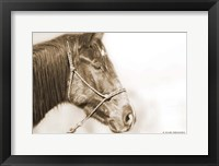 Framed Sepia Thunder