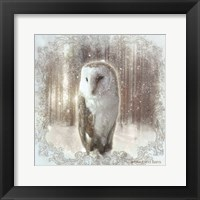 Framed Enchanted Winter Owl