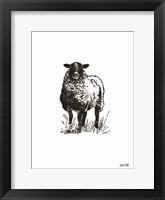 Framed Farmhouse Sheep