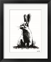 Framed Farmhouse Rabbit