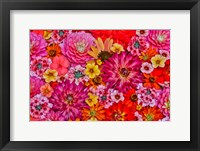Framed Flower Pattern With Large Group Of Flowers, Sammamish, Washington State