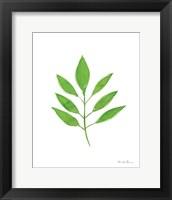 Framed Fresh and Green VI