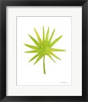 Framed Fresh and Green V