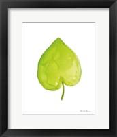 Framed Fresh and Green III