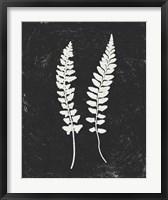Framed Forest Shadows III Black Crop
