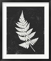 Framed Forest Shadows I Black Crop