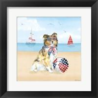 Framed Summer Paws Patriotic V