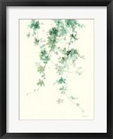 Framed Trailing Vines II