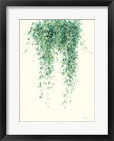 Framed Trailing Vines I