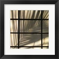 Framed Palm Window