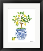Framed Lemon Chinoiserie I